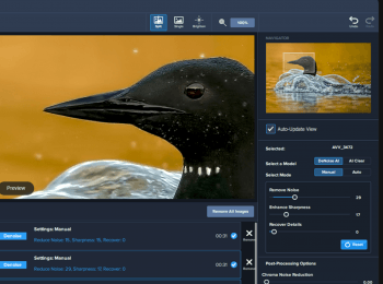 Topaz Labs  – AI-Powered Noise Reduction Tool